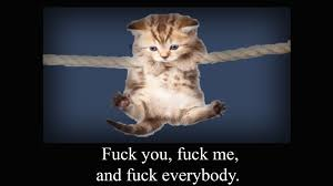 Fuck Me Meme - john oliver cat on rope fuck me meme imgur