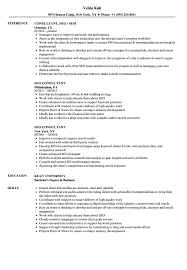 Great Resume Cerescoffee Co Seo Expert Resume Format Seo Executive Resume Template 12 Free