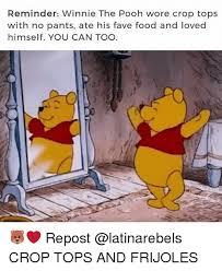Pooh Meme - 25 best memes about pooh pooh memes