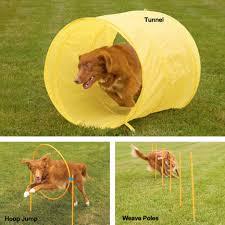 Backyard Agility Course Outward Hound Zipzoom Agility Starter Kit Dog Agility Training