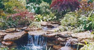 Backyard Gravel Ideas - gravel ideas backyard landscaping fish pond dma homes 20013