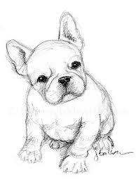 25 unique puppy drawings ideas on pinterest puppy drawing cute