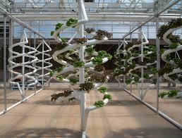 spiral hydroponic setup homemade herbs pinterest