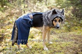 Wolf Costume Bad Wolf Costume For A Dog