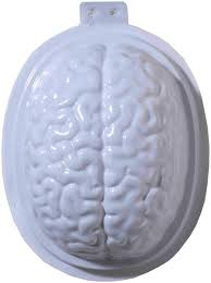 Halloween Brain Cake by Amazon Com Forum Novelties 2 Piece Brain Gelatin Mold White