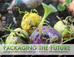 plantable paper packaging the future can plantable seed paper give way to a