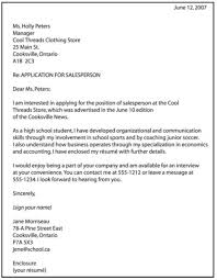 resume writing professional profile ladders resume service review