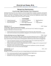 digital marketing resume advertising marketing resume sle professional resume exles