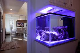 Home Aquarium Coyle Modular Homes Greenwich Home Construction Complete Coyle