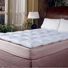 cotton mattress topper foter