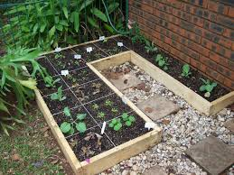 what to plant in square foot garden planting guide method square
