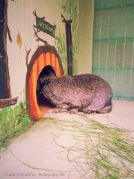 6 Rabbit Hutch Whimsical Rabbit Hutch For A Special New Pet Clarajteixeira
