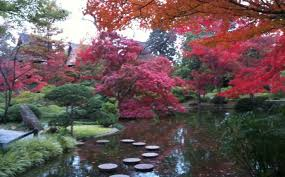 Ft Worth Botanical Garden Botanical Gardens Home And Garden