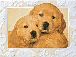 pumpernickel press wildlife cards as gold golden retriever embossed boxed note cards