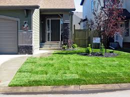 simple cheap front yard landscaping ideas image of landscaping