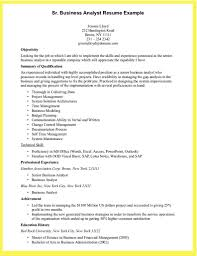 Resume Sample Data Analyst by Cover Letter Examples Data Analyst