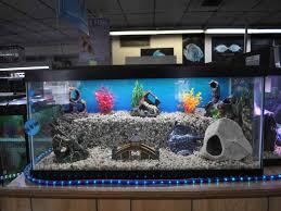unique fish tank decorations cool diy aquarium decor ideas