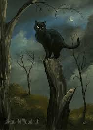 best 25 halloween black cat ideas on pinterest halloween poems
