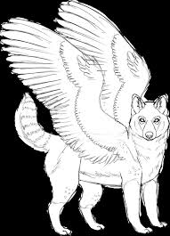 winged husky sketch by kanbhik on deviantart