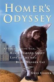 Taking Care Of A Blind Cat Homer U0027s Odyssey By Gwen Cooper