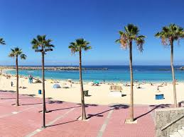 hotel holiday club playa amadores spain booking com