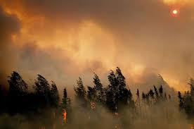 Canada Wildfire Smoke Usa by The Stunning Statistic That Puts This Year U0027s Alaskan Wildfires In