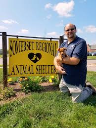somerset regional animal shelter takes in 8 dogs from texas