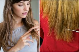 hair cut back of hair shorter than front of hair hair breakage 10 common causes and how to fix them allure