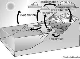 water cycle define water cycle at dictionary com