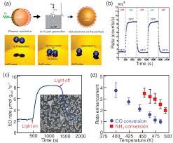 the effect of electrons and surface plasmons on heterogeneous