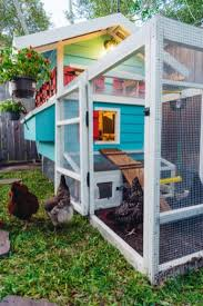 backyard chicken coop my feather babies the pink envelope