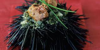 comment cuisiner des oursins oursins farcis au tartare d algues et ciboulette facile recette