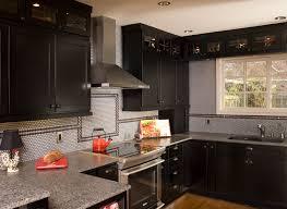 Black Shaker Style Kitchen Cabinets Modern Cabinets - Black stained kitchen cabinets