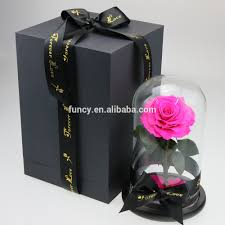 deep pink color size s h23 5 d15 cm glass dome preserved eternal
