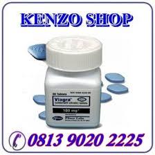 jual obat kuat viagra asli usa di medan 081390202225 karya seni