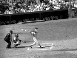 what do you think of ted williams now biography of ted williams