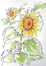 sketchbook wandering city in the country garden