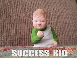 Success Meme Baby - success kid meme 3d print cgtrader