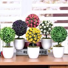 plants for office desk small desk plants goodna info