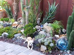 inspirations find your best style of succulent landscaping for