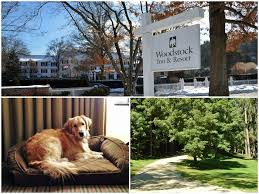 Vermont traveling with pets images New england dog friendly vacations jpg