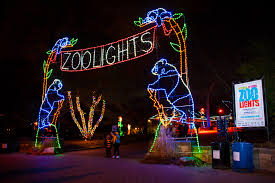 the ultimate list of holiday light displays in the dmv