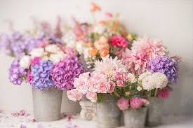 floral bouquets beautiful floral bouquets pictures photos and images for