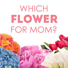 Flowers For Mom Choosing Flowers For Mother U0027s Day Flower Muse Blog