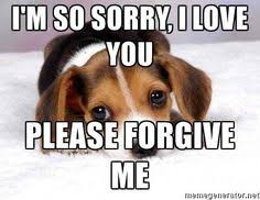 I Am Sorry Meme - i m sorry please forgive me sad puppy meme generator im
