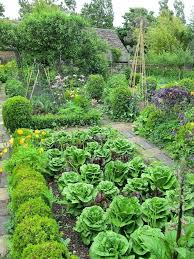 Fruit And Vegetable Garden Layout Best Plants For Vegetable Garden Stylish Flowers To Plant In