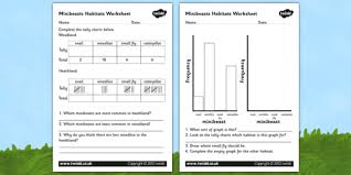 minibeast habitat graphs worksheet habitats worksheets