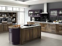 White Gloss Kitchen Cabinet Doors by Gloss Kitchen Cabinet Doors Gallery Glass Door Interior Doors