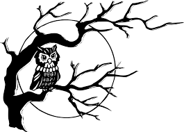 clipart owl in tree