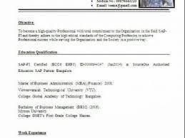 Bussiness Resume Professional Business Resume Nardellidesign Com